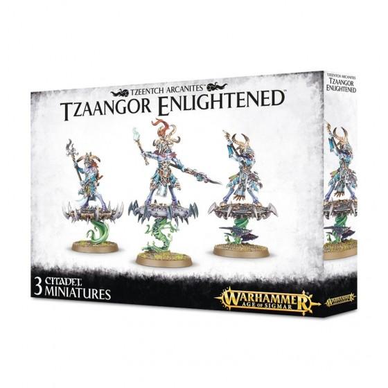 Warhammer Age of Sigmar - Tzaangor Enlightened