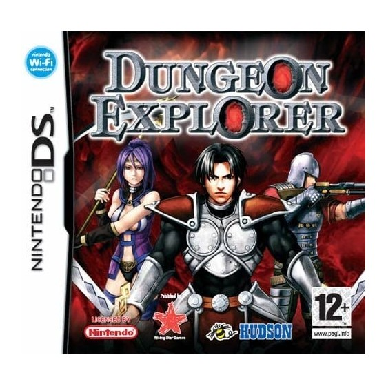 Dungeon Explorer - DS usato